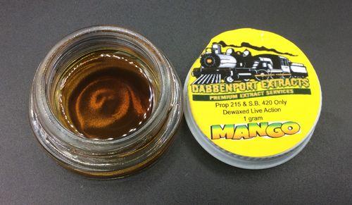 Mango Live Action by Dabbenport