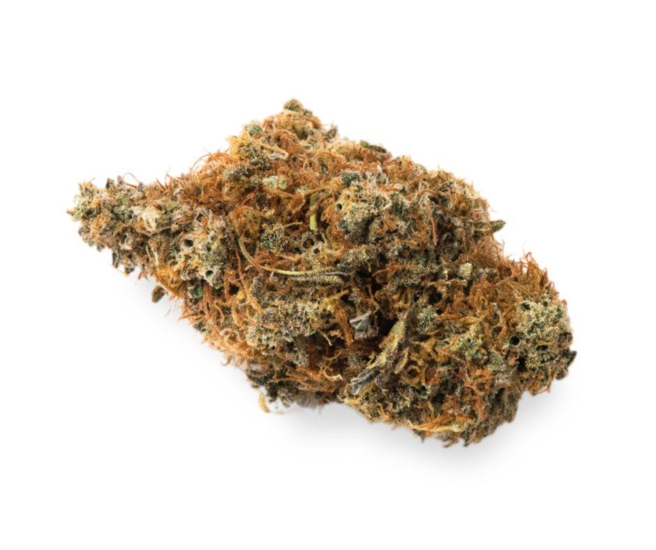 Pruf Cultivar - Tangerine Jack, Sativa, Indoor