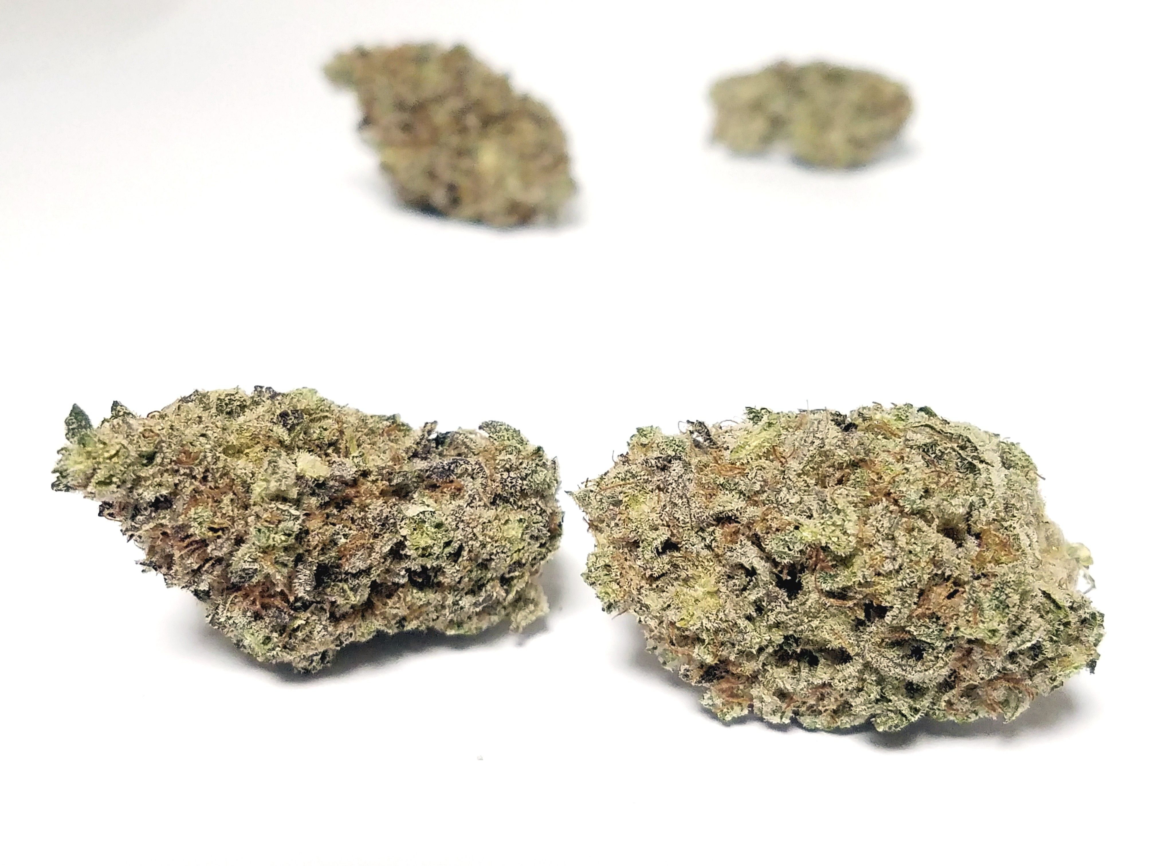 Noble Farms - Blueberry Kush, Indica, Indoor