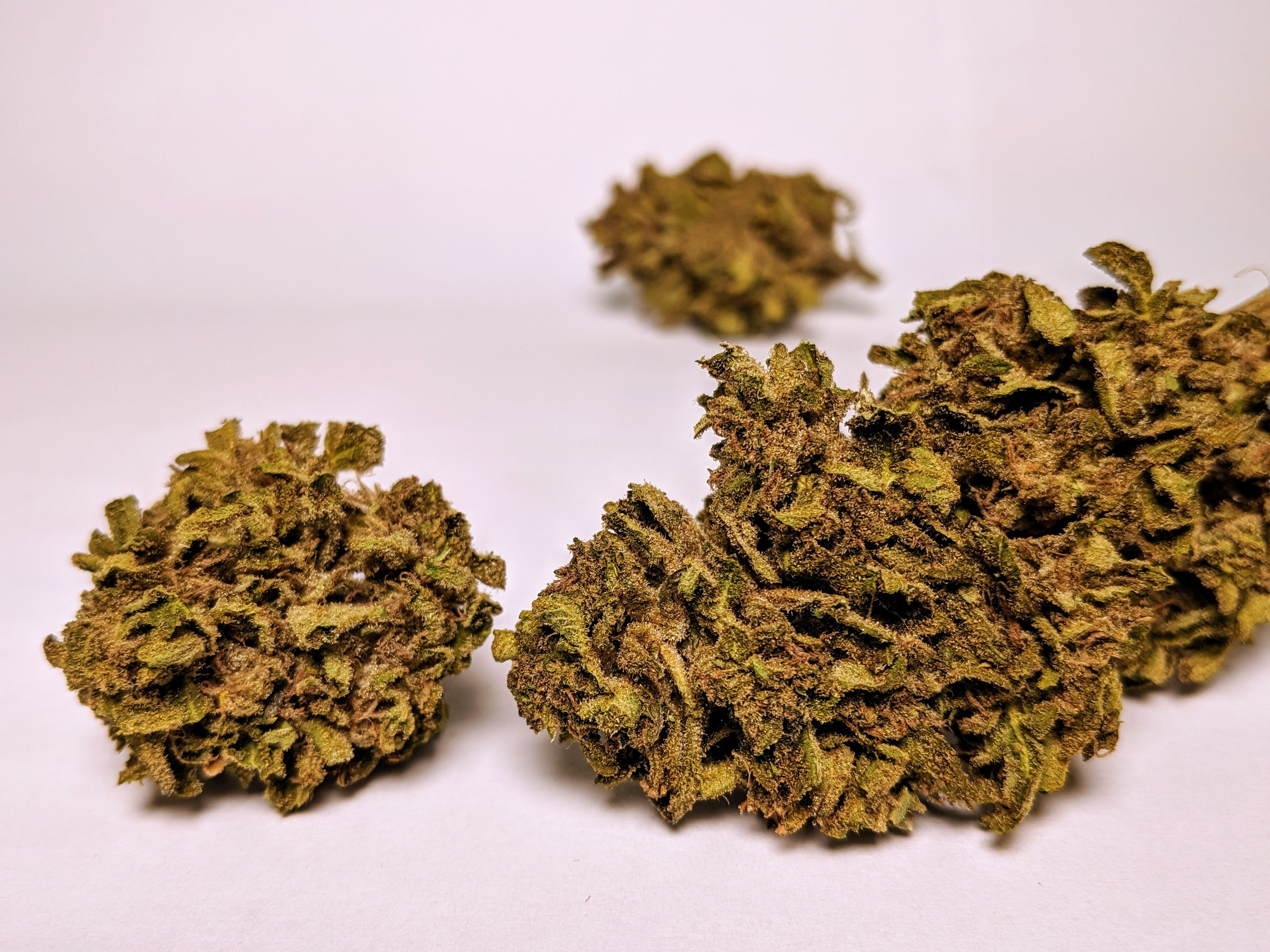 Moto - Blue Magoo, Indica, *Questionable Quality*