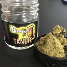 Bassrocks - Tangie