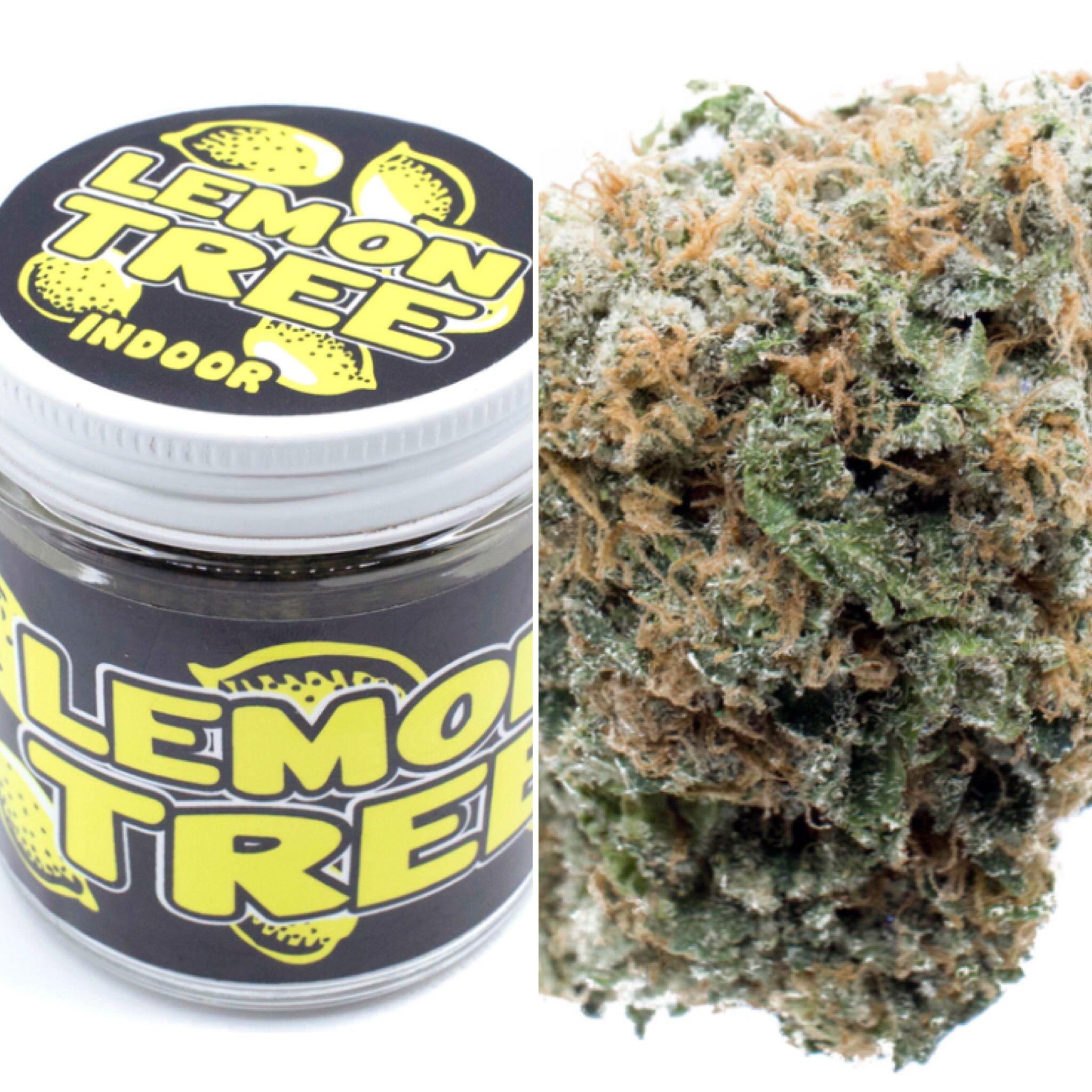 Lemon Tree 1/8 Jar