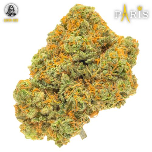 Paris-Louie XIII (1/8oz)