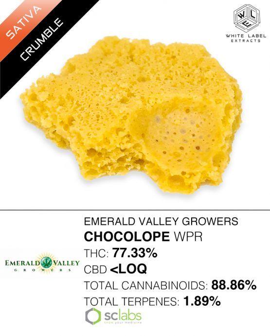 WLE -  Chocolope, Sativa, Honeycomb
