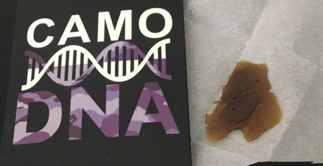 Camo DNA SFV OG Shatter