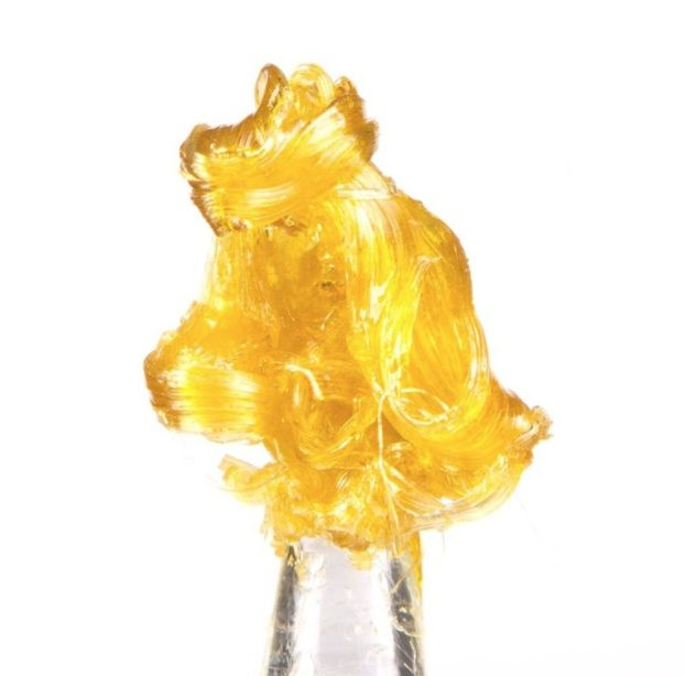 King Louis OG Nug Run Shatter- West Coast Cure