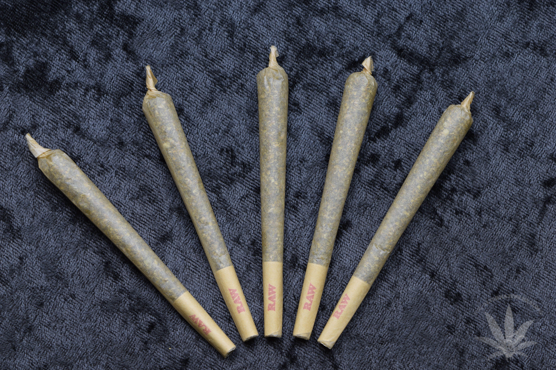 Pre-98 Bubba Kush Pre-Roll 1.5 grams