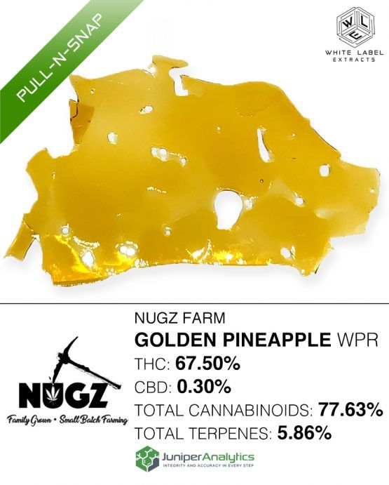 WLE - Golden Pineapple WPR Pull-n-Snap, Was $30