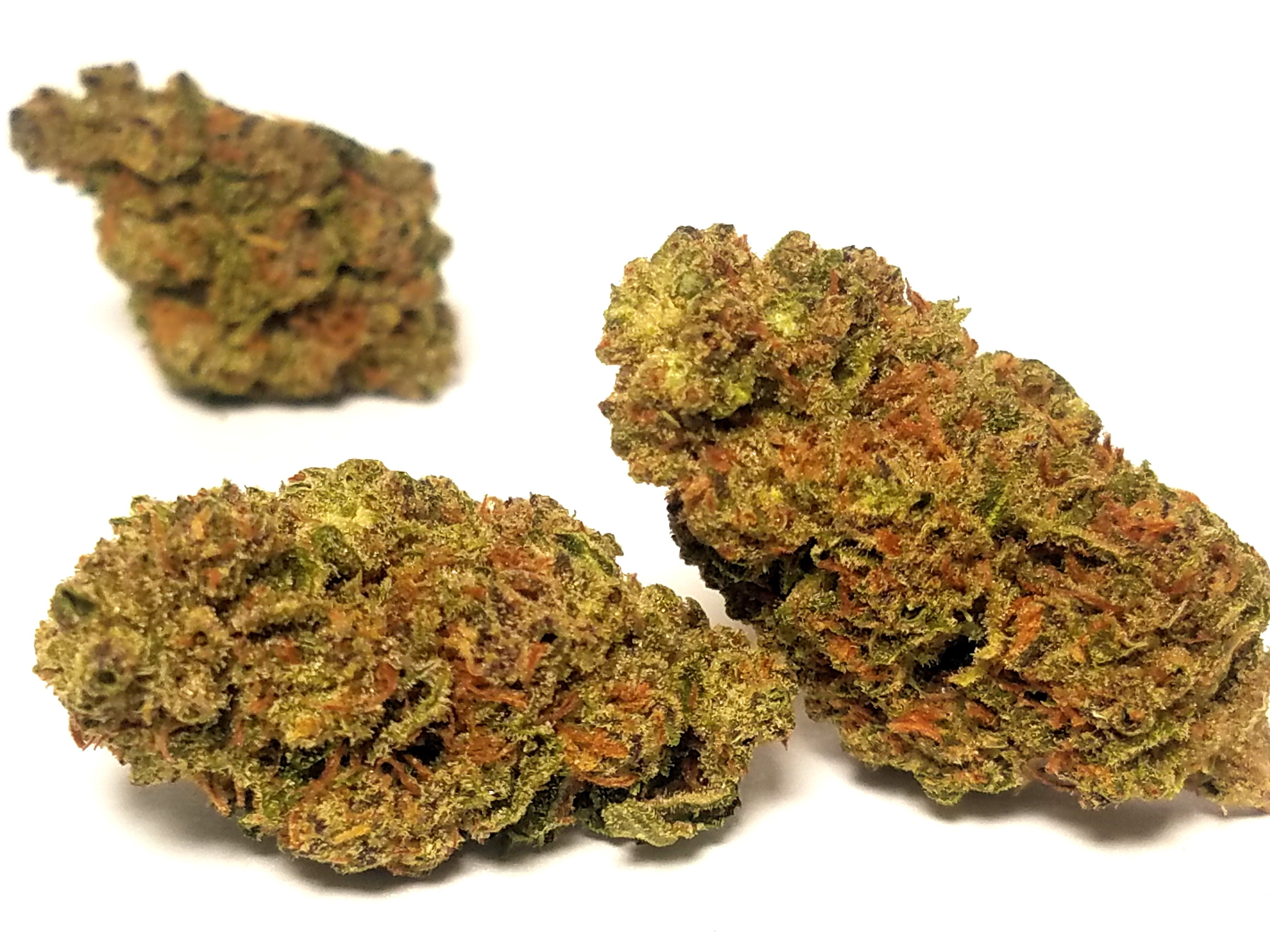 William Cannabis Co - Black Cherry Peaches, Hybrid, Outdoor