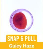 Tree Honey - Guicy Haze, Sativa, Pull n Snap