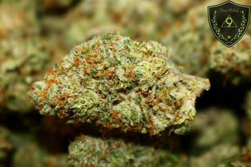 Lucky Charms *** SEEDED *** $25/8th SPECIAL! *** $200/OZ SPECIAL! ***