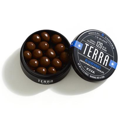 Terra Blueberry Bites