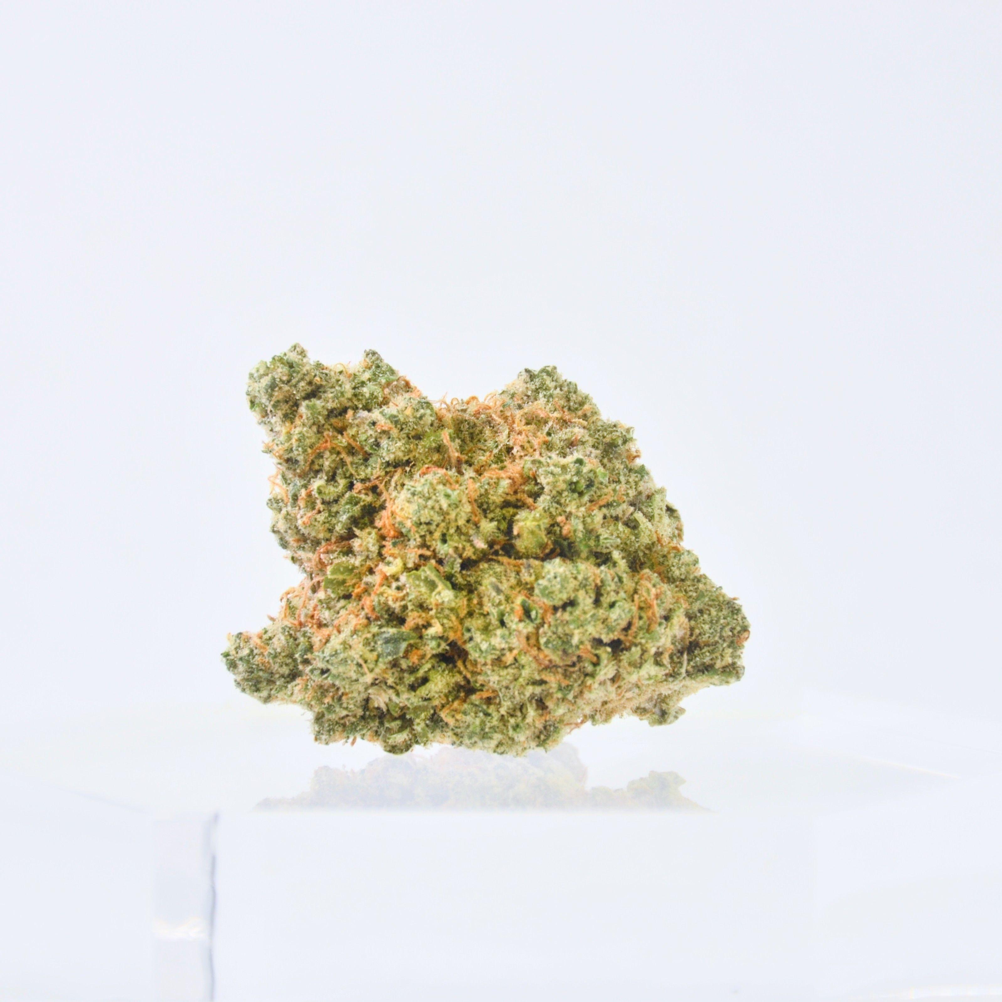 Avitas Oregon - Lemon Meringue, Sativa *Was $10/g*