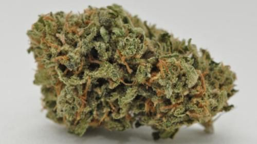 Blue Ribbon Kush