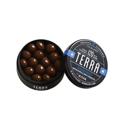 Terra Blueberry Bites