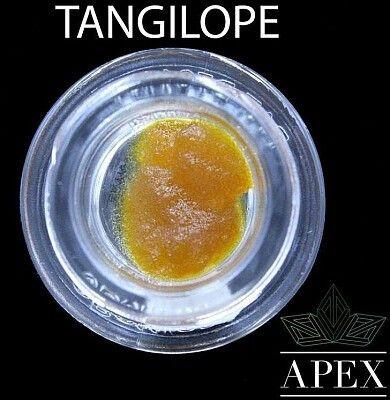 Terpboys - Tangilope