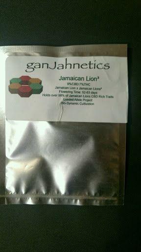 Jamaican  Lion 10pk