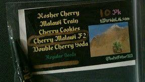 Cherry MalawiF2   10pk