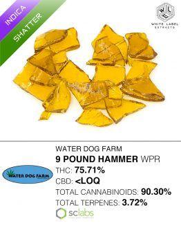 WLE - 9lb Hammer, Indica, Shatter