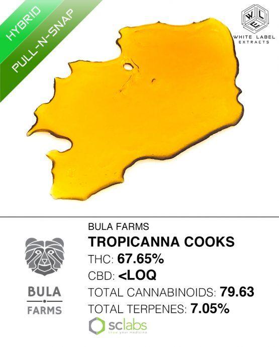 WLE - Tropicanna Cooks, Sativa Hybrid, Shatter