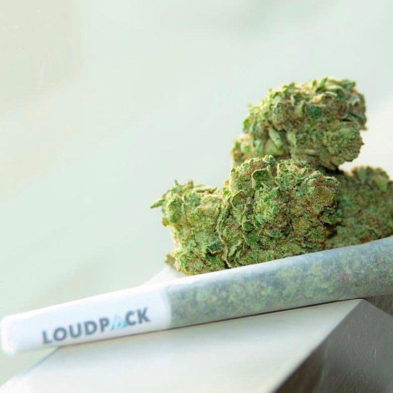 Loudpack 1g Preroll Platinum Kush $12