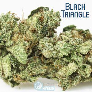 Black Triangle OG