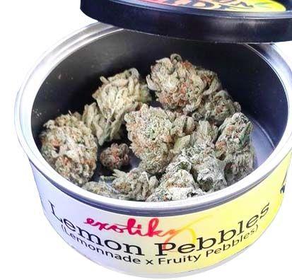 The Exotikz Lemon Pebbles