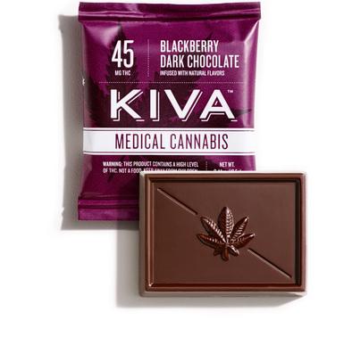 Blackberry Dark Chocolate Mini