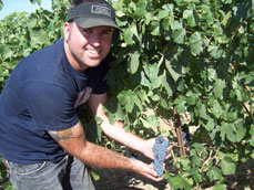 Undergraduate student Landon Keirsey interned this summer at Double Canyon Vineyard in the Horse Heaven Hills AVA near Alderdale.