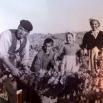 Family photo hanging in Emilio Moro Winery. Emilio is 2nd from left.