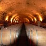 Barrel room at Cousino-Macul
