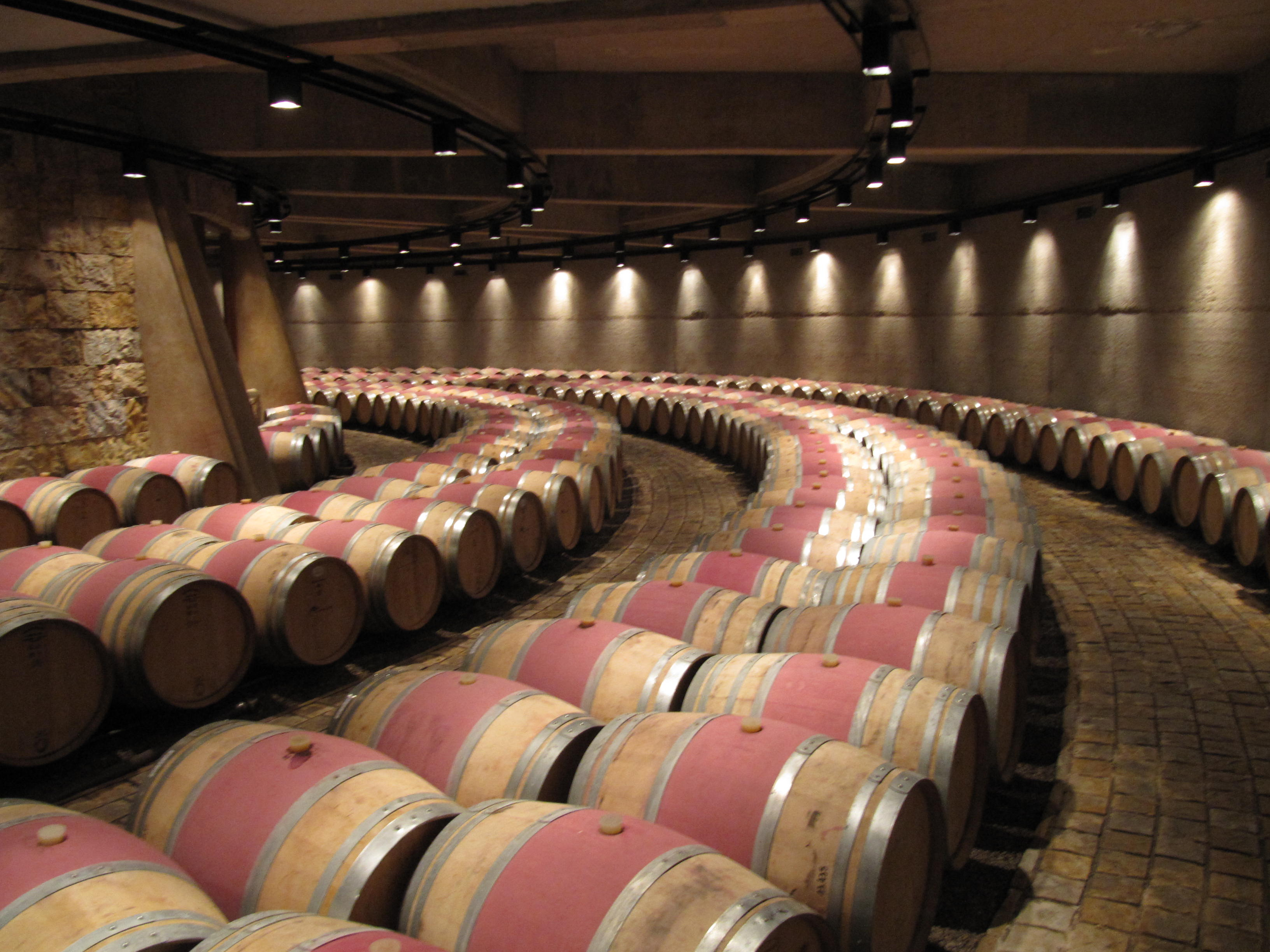 Chile and Argentina Wineries Tour | WSU Viticulture and Enology ...