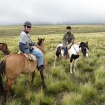 HorsebackRidingII