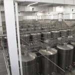 Large tank room at Errazuriz