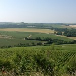Overview of Chablis region