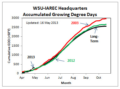 Figure 1- Growing Degree Day accumulation (base 50ºF) for 2013, 2012, 2003 (hot year) and the long-term average. Charts for representative AWN stations at each AVA are updated at: http://wine.wsu.edu/research-extension/weather/growing-degree-days/ . Make your own GDD chart for the AgWeatherNet station nearest you at: http://weather.wsu.edu
