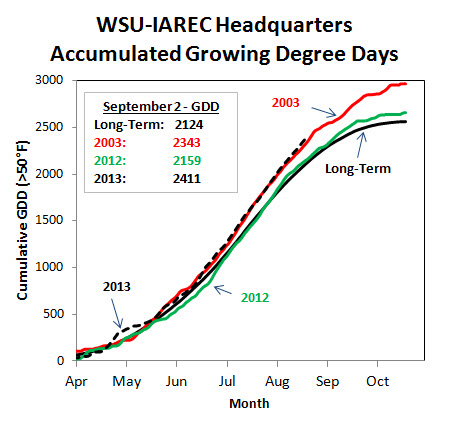 Figure 2- Heat accumulation in 2013 is mimicking recent warm vintages of 2003, and 1994 (not shown). Forecast warm days and cool nights will provide ideal ripening conditions in the Valley. Site-specific GDD information can be downloaded at: http://weather.wsu.edu