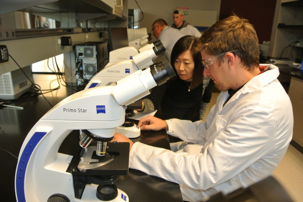 Four researchers in the lab with microscopes on the table