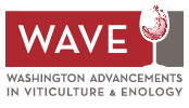 WAVE-Washington Advancements in Viticulture & Enology Logo