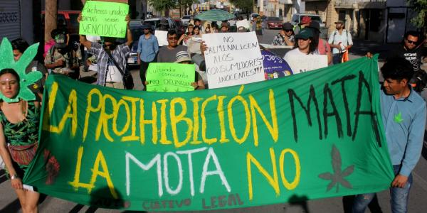 México | Preparan en el Senado discusión para legalizar la marihuana