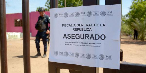 México | Sedena localiza más de 900 laboratorios, pero sólo hay 24 detenidos