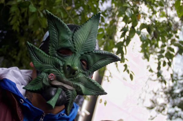 México |  Esto opina la población mexicana sobre la legalización de la marihuana