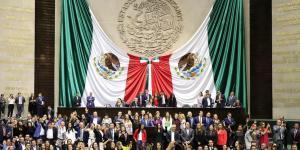 Cuestione | México | ¿Cárcel a quien reparta frijol con gorgojo?
