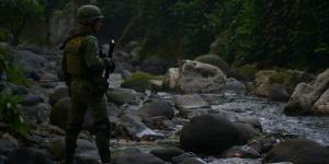 Cuestione | Columnas | Crimen organizado: ¿la ley de la selva?