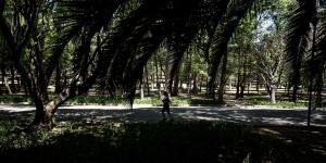 Cuestione | México | De Campo Militar a mega pulmón de la CDMX