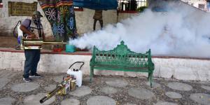México | Dengue, influenza y COVID-19: el cruce letal que amenaza a México