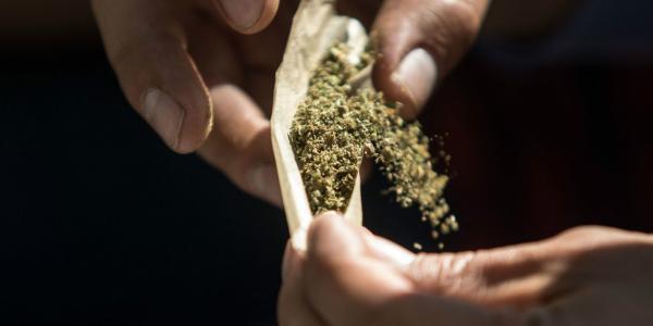 México | Legalización de la marihuana: la discusión que viene de una ley que se queda corta