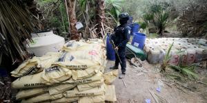 México | Ejército tiene el nivel más bajo de decomiso de drogas en 13 años