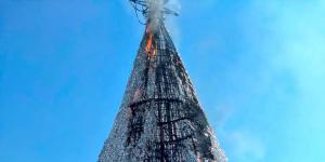 México | Incendian árbol de Navidad... esperen, ¿qué?