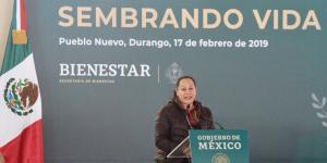 Cuestione | México | La 4T acumula errores y correcciones